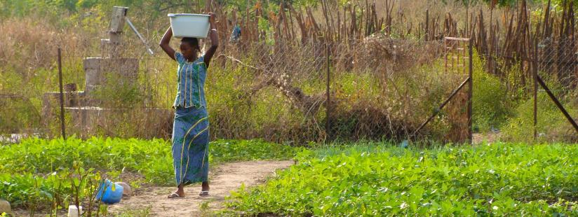 Gender-responsive nutrition policies – a myth or a possibility?