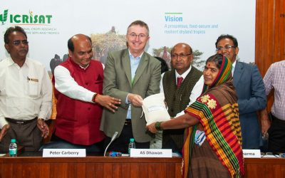 India gets its first biofortified sorghum