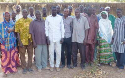 The birth of an impatient and optimistic breed of community seed producers in Mali
