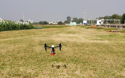 Laying the ground for drone-based technologies to support development of climate-ready crops
