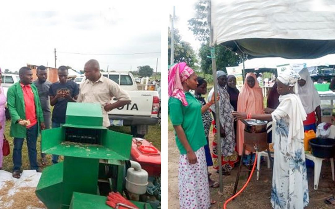 Sorghum goes pop: Success stories from a Nigerian initiative
