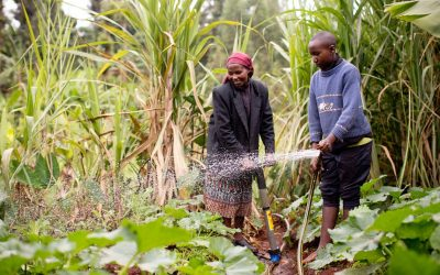 Not just farmers: understanding rural aspirations is key to Kenya's future