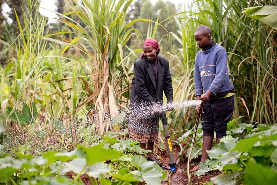 Not just farmers: understanding rural aspirations is key to Kenya's future