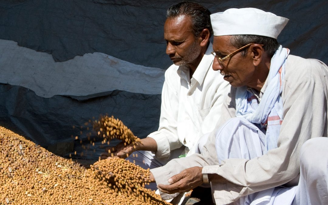 Post-Covid agri reforms: Odisha could be frontrunner