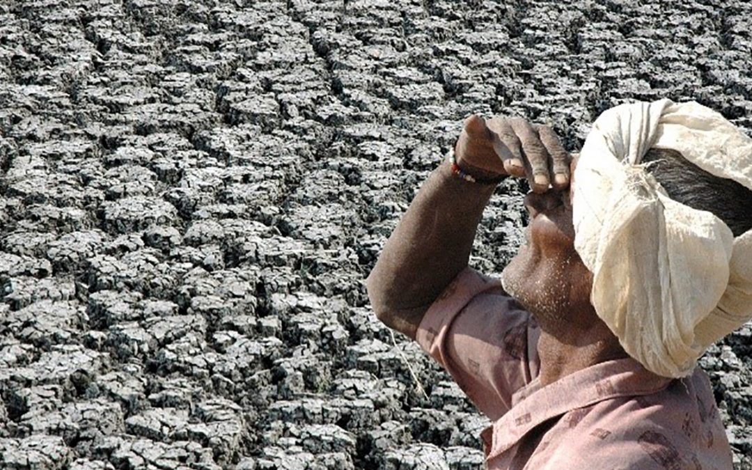 Measuring farm households' vulnerability and resilience to climate shocks now possible, new research shows