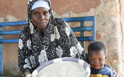 Malian farmer sets an example as a successful seed producer