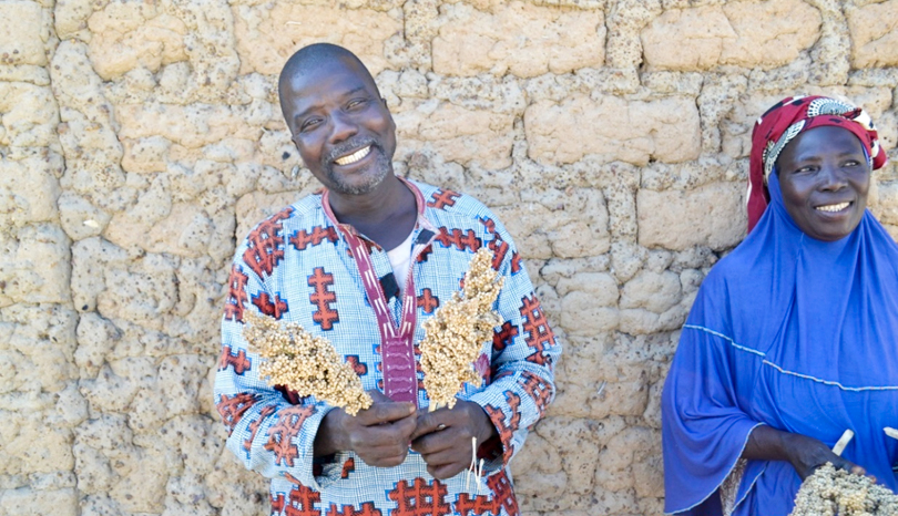 Farmer cooperatives across West and Central Africa help expand access to improved seeds, boosting yields
