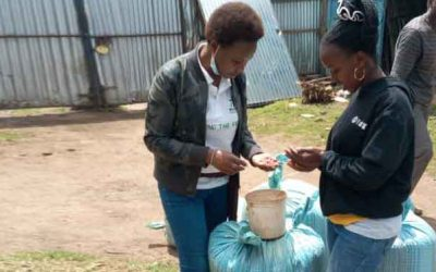 Engaging Kenyan youth in bean business to boost income