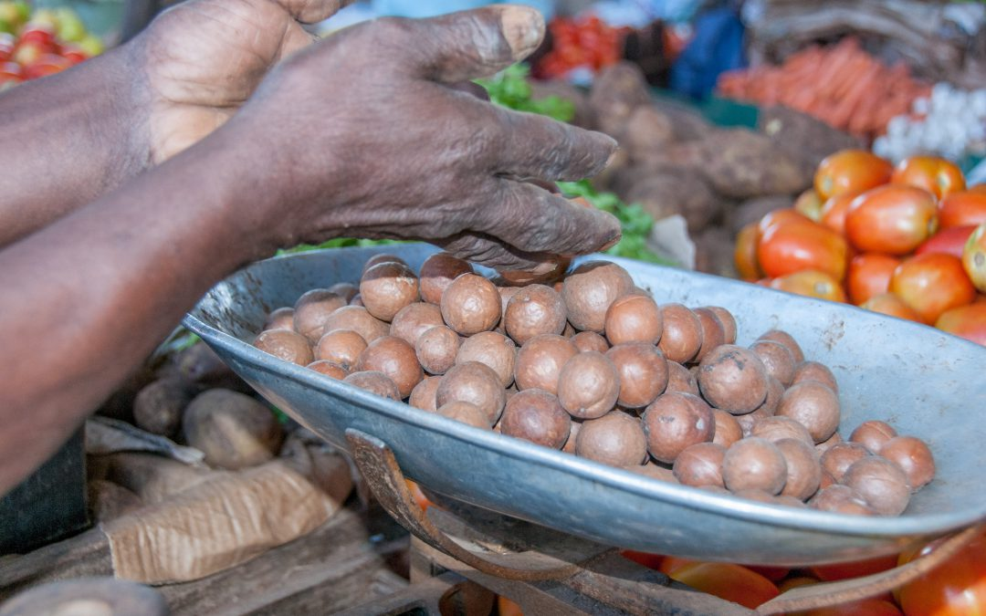 Transforming agri-food systems for the Sustainable Development Goals requires honest discussion on trade-offs