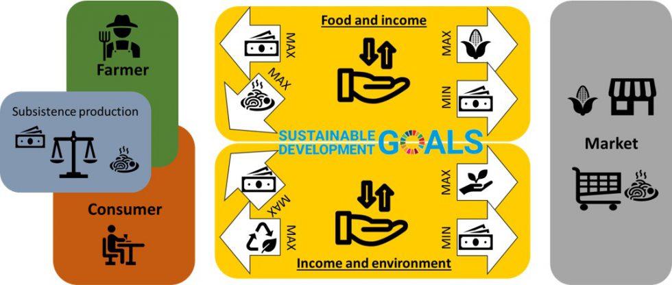 A agri-food system schematic. (Own presentation based on IFPRI, 2020)