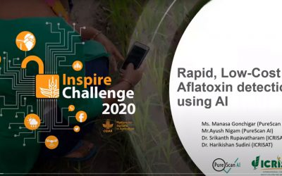Rapid, Low-Cost Aflatoxin detection using AI