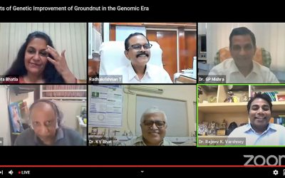 Celebrating four decades of collaborative research on groundnut in India