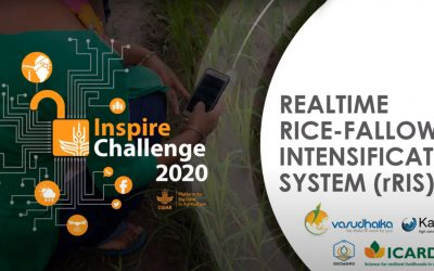 Realtime Rice-fallow Intensification System (rRIS)