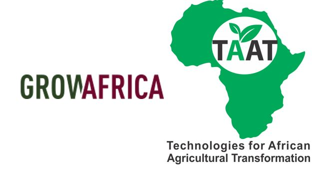 Technology-driven modernisation of African Agriculture: what role for the Private Sector?