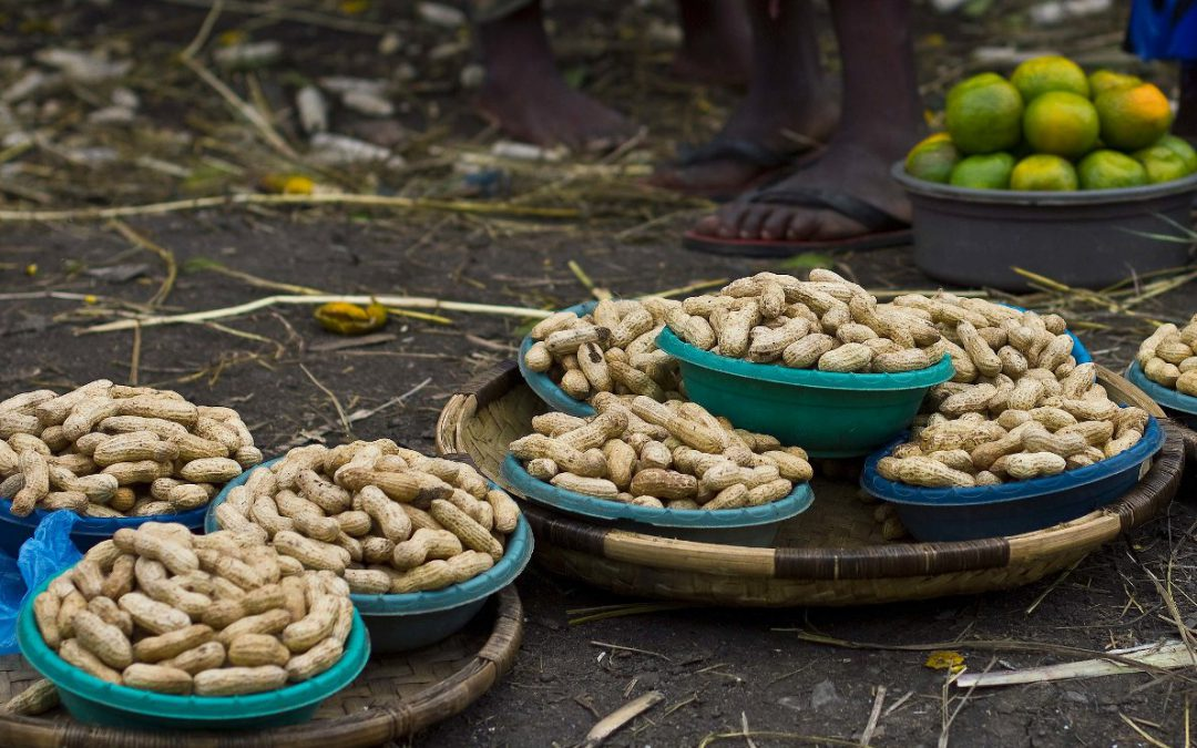 Trade-offs along food value-chains: anticipate the unintended for better food and nutrition security