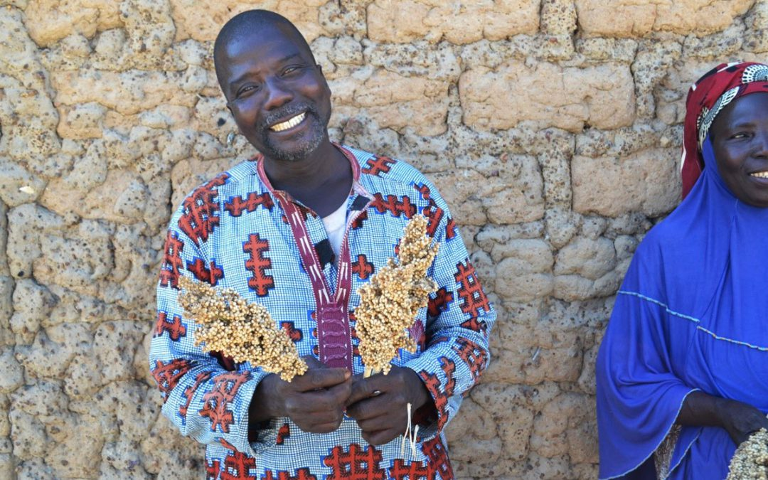 Sorghum and millet grow money for the Mariko family