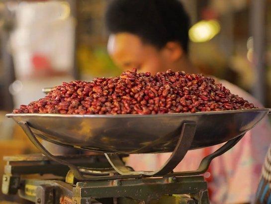 Video: How Iron Beans Gained Ground in Rwanda