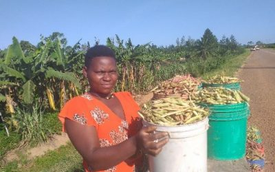 Fresh bean grain business in Tanzania; a new hope for youth and women