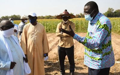 Mali Minister of Agriculture, Livestock and Fisheries keen on stronger research partnerships to benefit farmers nationwide