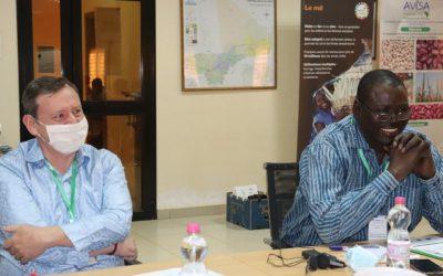 Malian farmers garner benefits of breeding initiatives, despite pandemic
