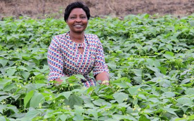 Cultural expectations in women's economic empowerment: Case of women and men farmers in Uganda