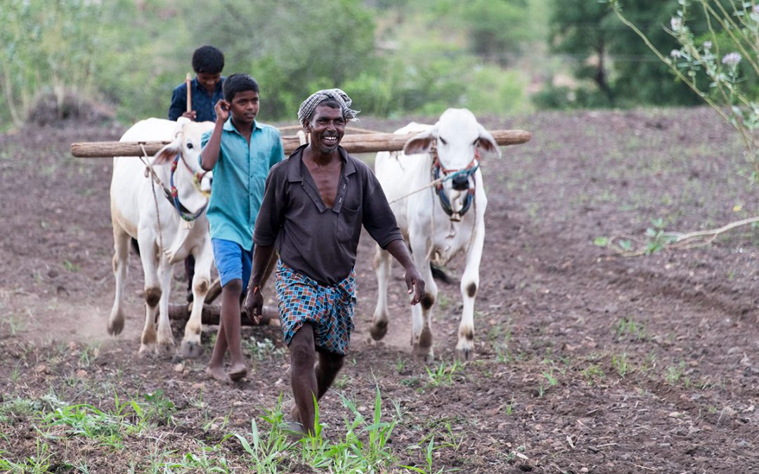 Why are aspirations of farming communities important to know in developing economies?