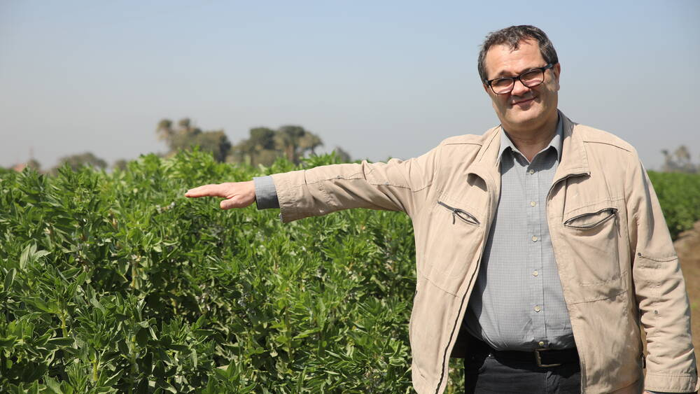 Techniques to enhance the genetic gain in crop breeding programs