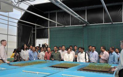 RapidGen Platform: A Revolutionary Crop Breeding Platform from ICRISAT