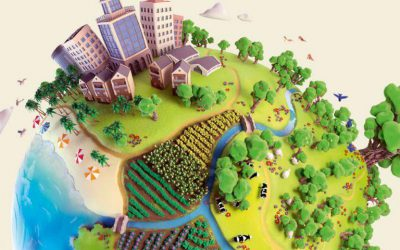 Agroecological transformation for sustainable food systems
