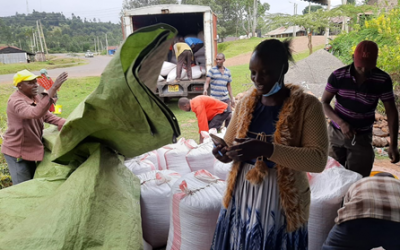 Nutrient-rich bean varieties and market linkages changing fortunes for farmers in Bomet County